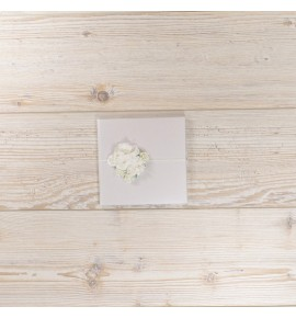 CD / DVD DĖKLAS